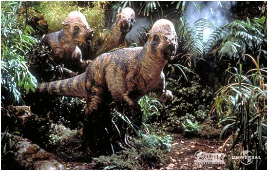 Datei:Pachycephalosaurus group.jpg