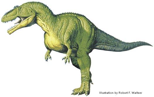 File:Walters giganotosaurus.jpg