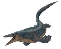 File:Tylosaurus.jpeg