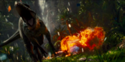 Explosion of heli