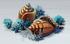 Giant Seashell