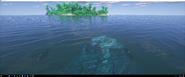 Coelacanths ocean monument