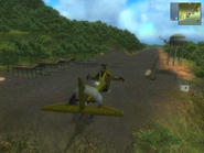 Isla Dominio airfield