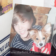 A picture of Sam in Justin's room in his grandparents' home.
