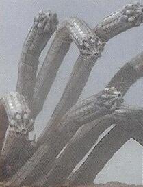 Hydra Worm