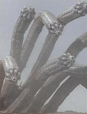 File:Hydra Worm.jpg