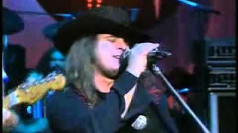 Lynyrd Skynyrd - Sweet Home Alabama **Official Video**