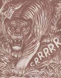 Tigre Cara.jpg