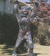 Amazon-vi-blackcatbeastman