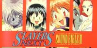 Slayers NEXT SOUND BIBLE II