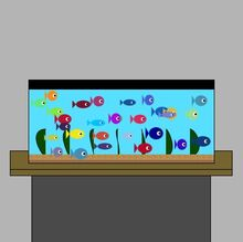 Fish Tank project JB