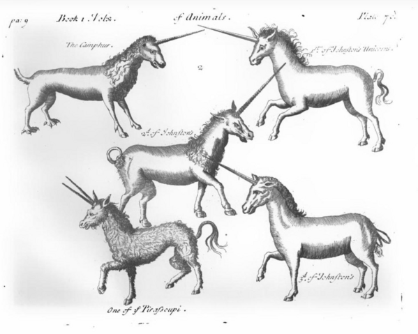 File:Pierre Pomet Complete History of Drugs unicorns.PNG