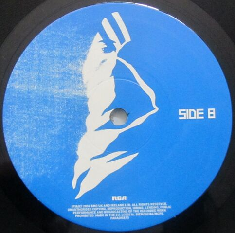 File:L.S.F. (Lost Souls Forever) 10 Vinyl Single (PARADISE15) - 3.jpg