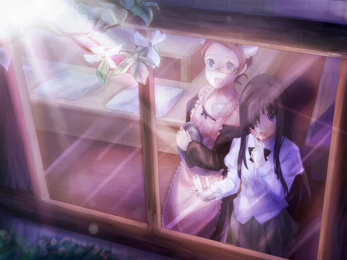 Hanako fw flash