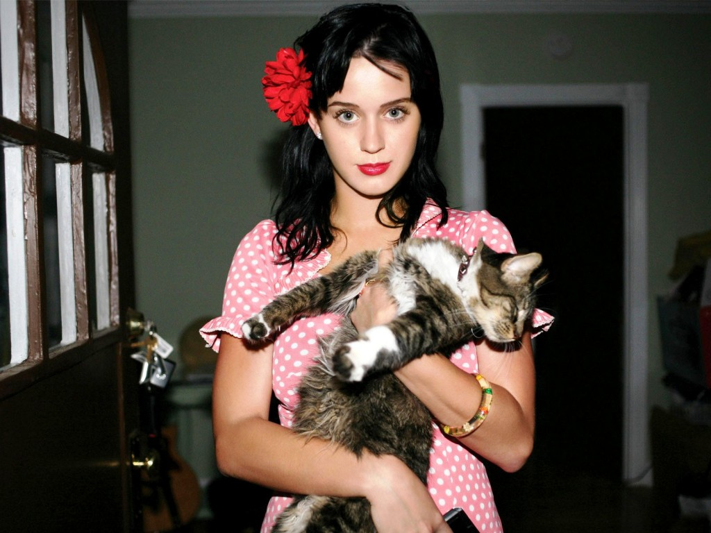 Katy perry and kitty purry.jpg