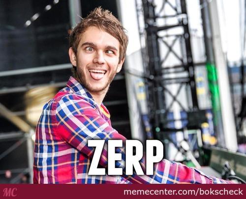 File:ZERP!.jpg