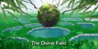 The Divine Territory