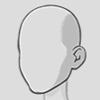 File:4. Headshape.png