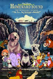 Pooh's Adventures of Homeward Bound The Incredible Journey Poster