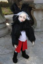 Goodreau Tea Party dolls (37)