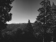 Crescent Manor-The Nature7