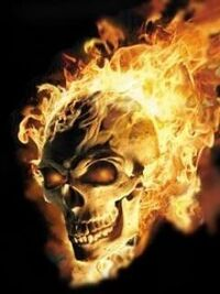 Black skull with flames