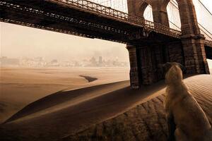 San Fransisco bridge after outbrake
