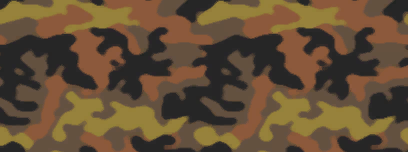 File:Fall camo.png