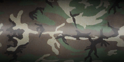 File:Woodland camo.png
