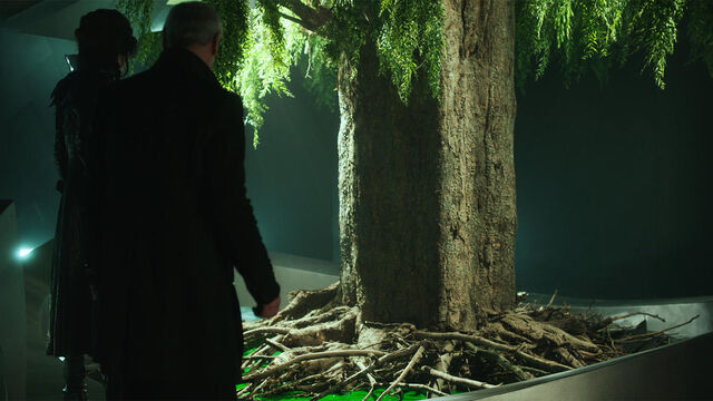 File:The Mother Tree S2E10.jpg