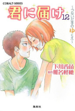 Kimi ni Todoke Light Novel v12 cover