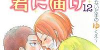 Kimi ni Todoke Light Novel Volume 12