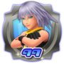 Level Counter Limit Riku Trophy HD1.png