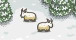 Scn2 Goat