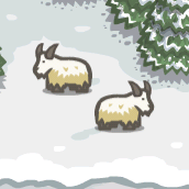 File:Mountain Goats.PNG
