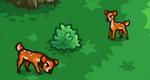 Scn2 Deer