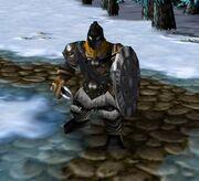 Njordsir 1.61 Warrior