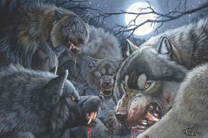 Werewolf Pack group