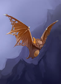 File:Card bg Venomous Bat.jpg