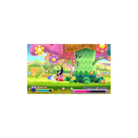 Kirby escarabajo atacando a fronda florida