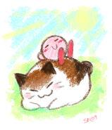 Cat Nap by salison