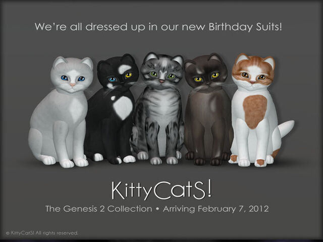 File:LOOK AT OUR BIRTHDAY SUITS!!!.jpg
