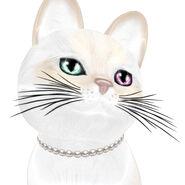 Girls Deserve Pearls