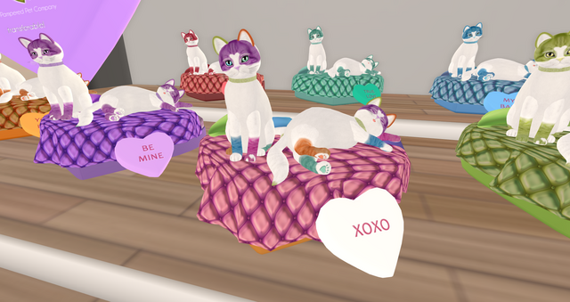 File:Sweeetcats.png