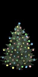 Lighted tree last