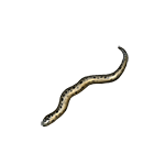 File:Reptile grass-snake.png