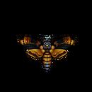 Butterfly deaths-head hawkmoth