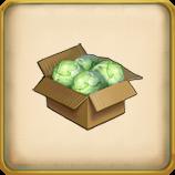 Cabbage Crops framed