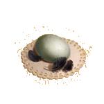 Black swan egg