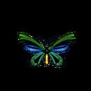 Butterfly birdwing